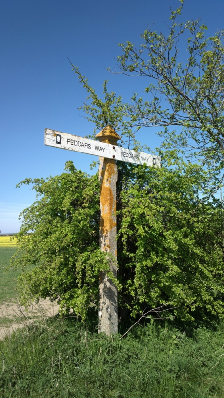 The old Peddars Way signs